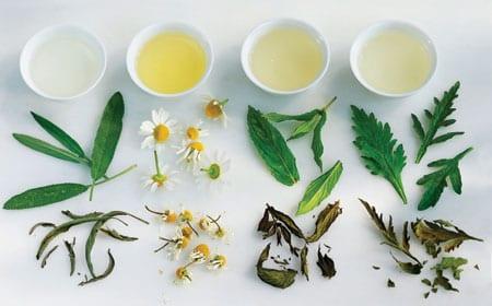 qnet herbal tea